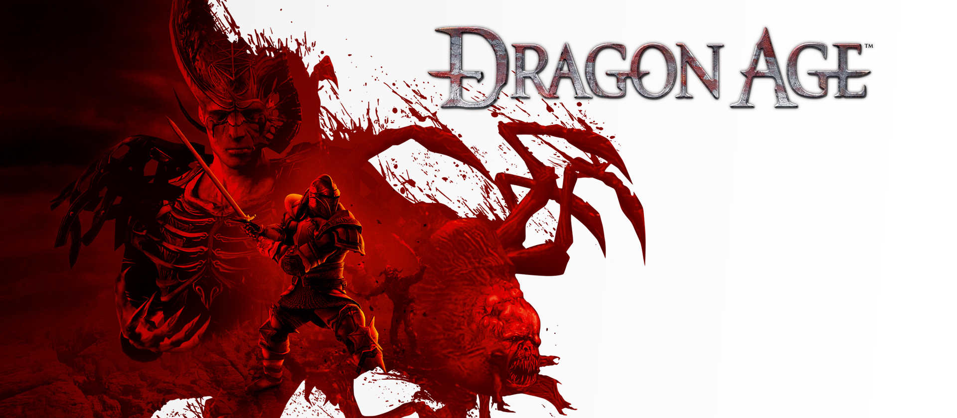 6914835-dragon-age-origins-game_1.jpg