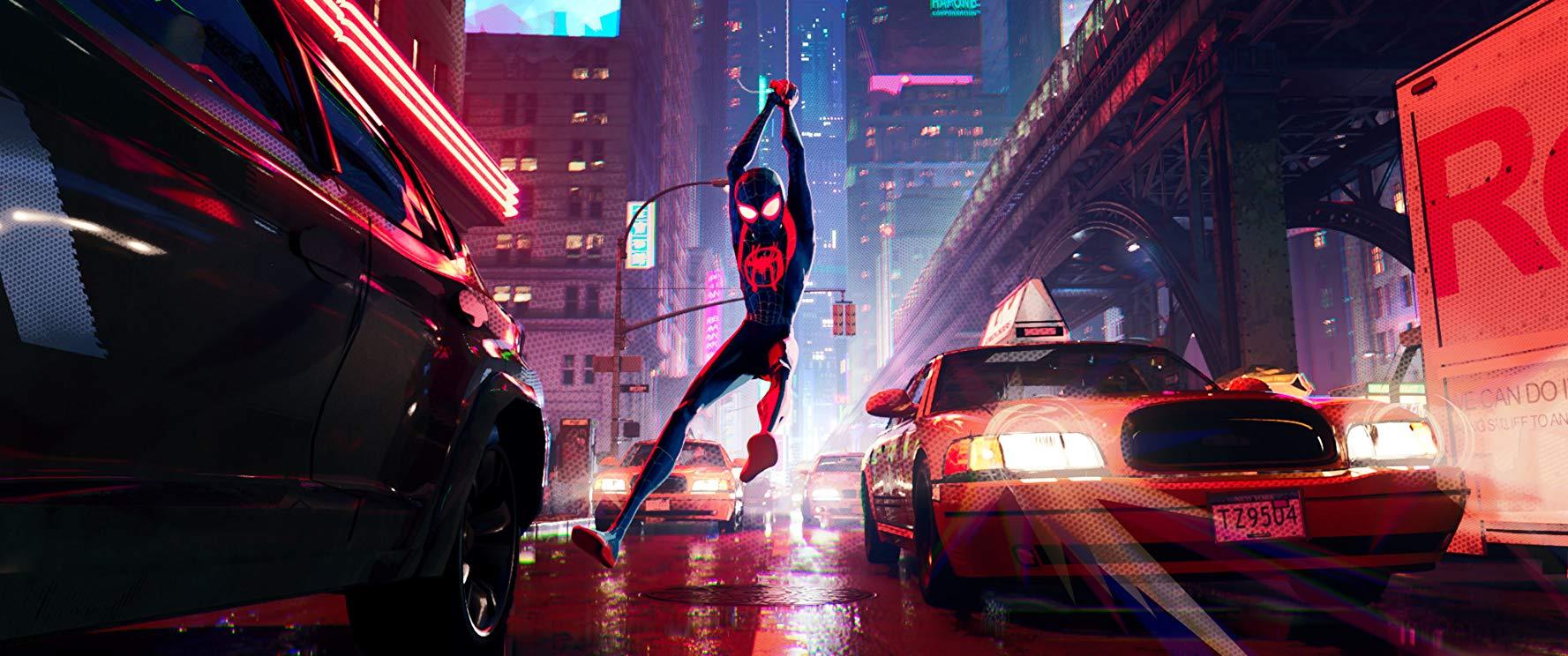 spider5.jpg